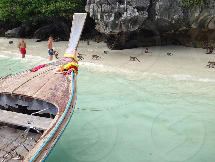 Monkey Beach Phi Phi Island Thailand.  photo