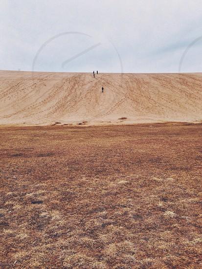 people walking on brown sandy surface photo