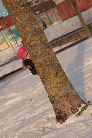 Kid girl snow hide tree fun winter pink  photo