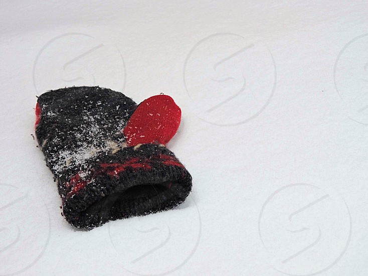 black and red printed textile photo