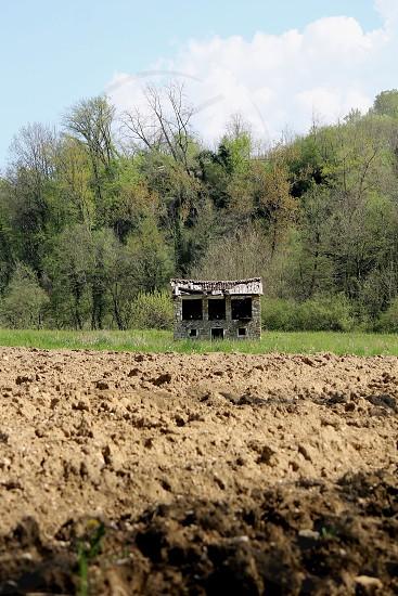 gray barn photo