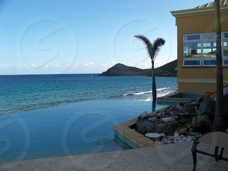 infinity pool island palm tree ocean stjohns  photo