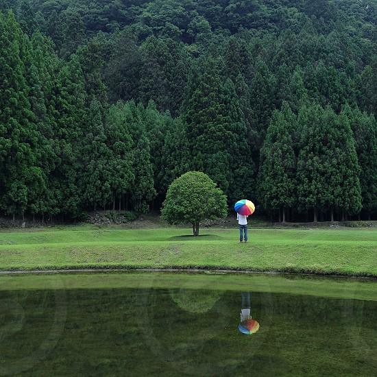 person holding multicolored umbrella with lake and tree view photo