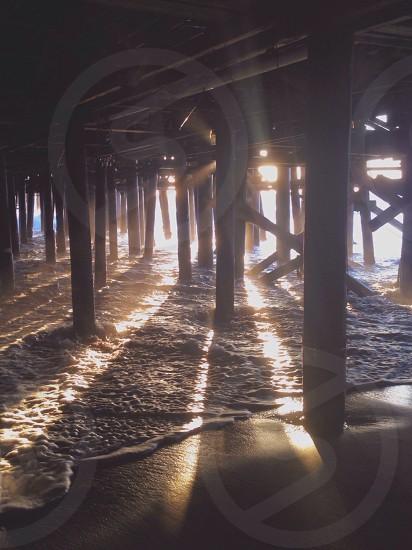 wooden beach posts photo