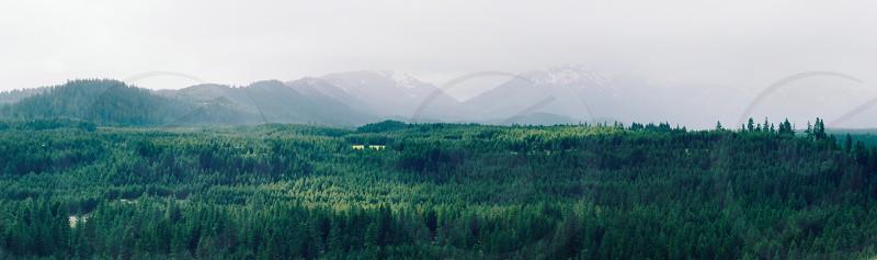 Cascade mountains in Washington photo