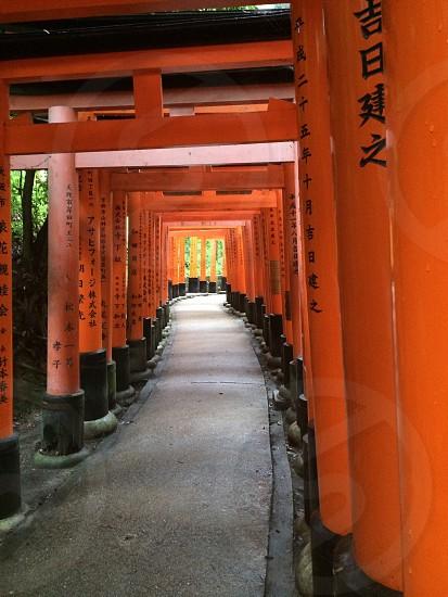 orange kanji character  post photo