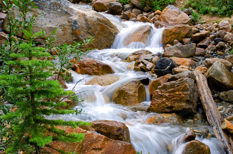 A small stream flowing from Angel Glacier in Jasper National Park photo