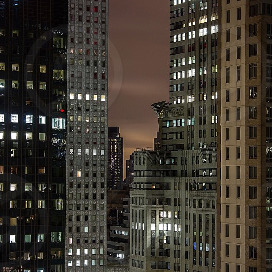 NYC'14 photo