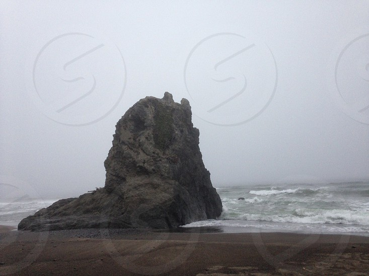 seashore photo photo