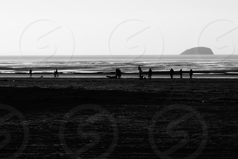beach in winter (b&w) photo