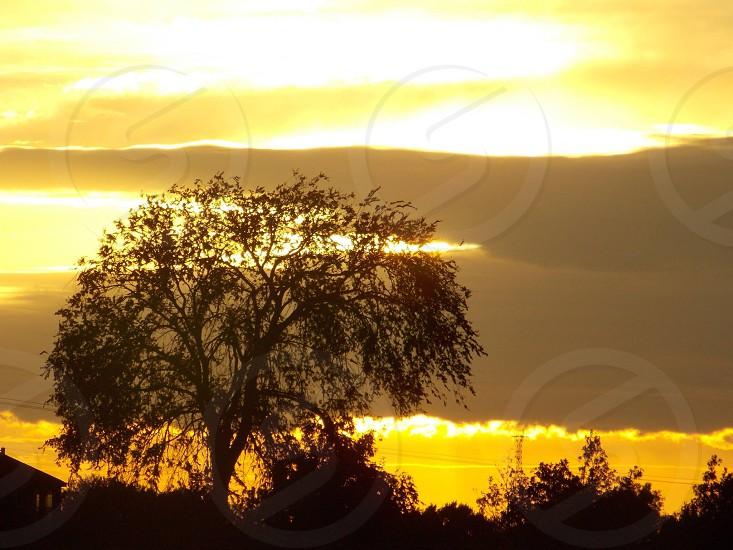 Texas summer sunset photo