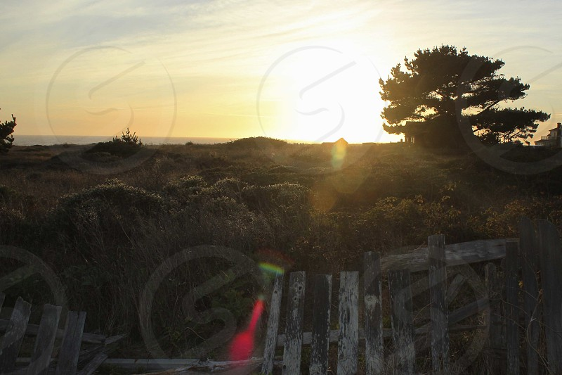 Mendocino California photo