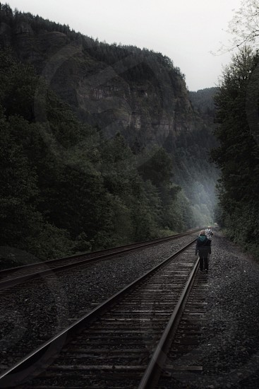 Fog railroad tracks forest woods light  photo