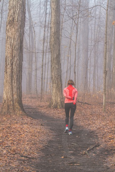 A walker on a forest path on a foggy fall morning photo