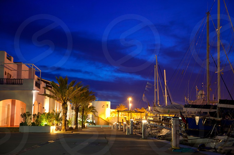 Balearic Formentera marina in night lights with yachts and palm trees in mediterranean photo
