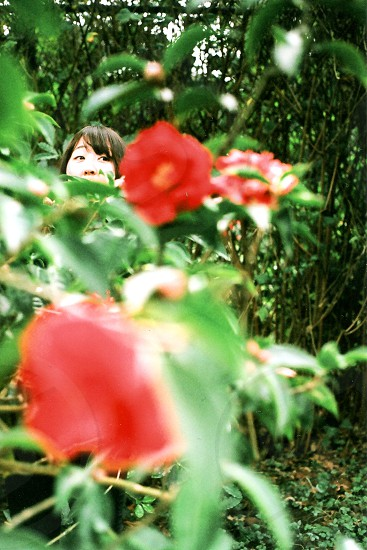 woman behind the flowers \ photo