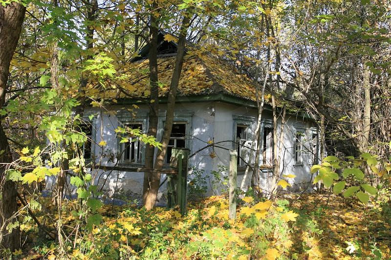Chernobyl - Ivankiv Raion photo