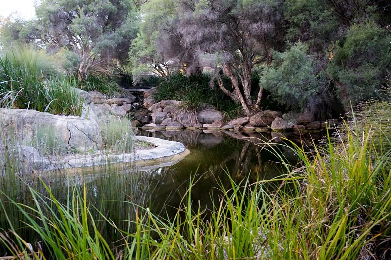 Western Australia Kings Park at sunset photo