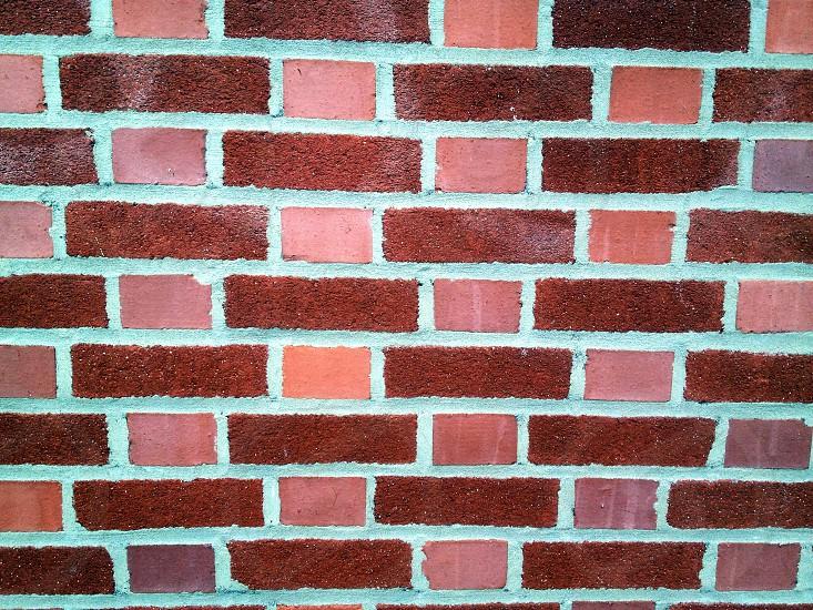 pink brown and purple brick wall photo