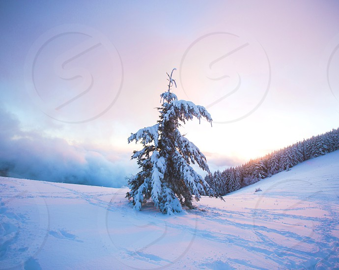 oregon Pacific Northwest nature travel road trip lifestyle landscape winter snow ice trees holiday sunset glow fog clouds mountains Christmas photo