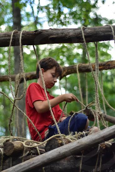 Creative kids building a tree house photo
