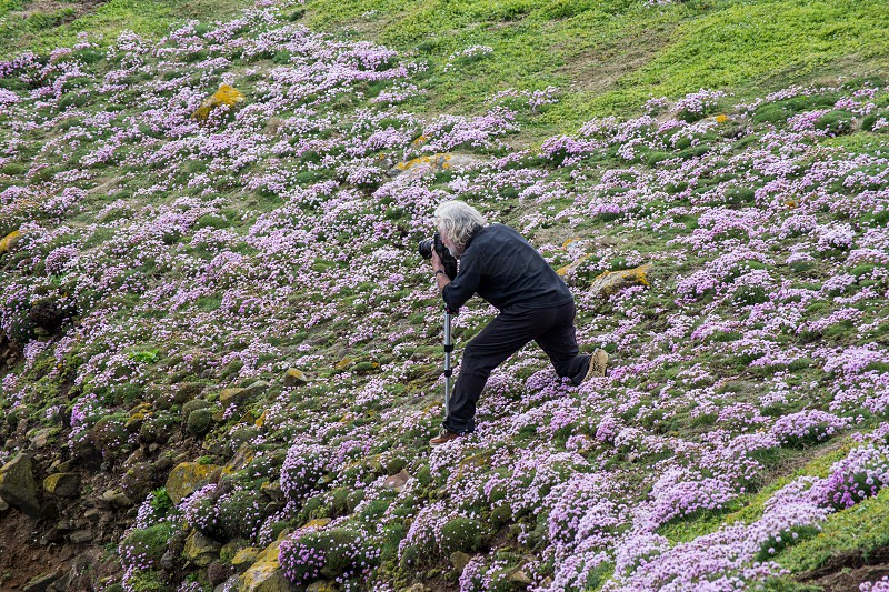 view of man taking a picture in grassy field photo