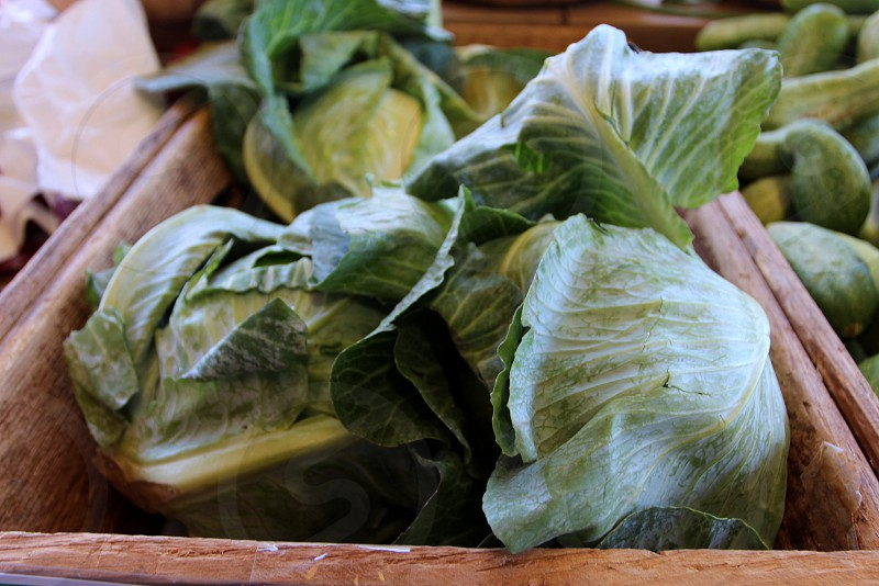 Cabbages in wooden box at farmers market photo