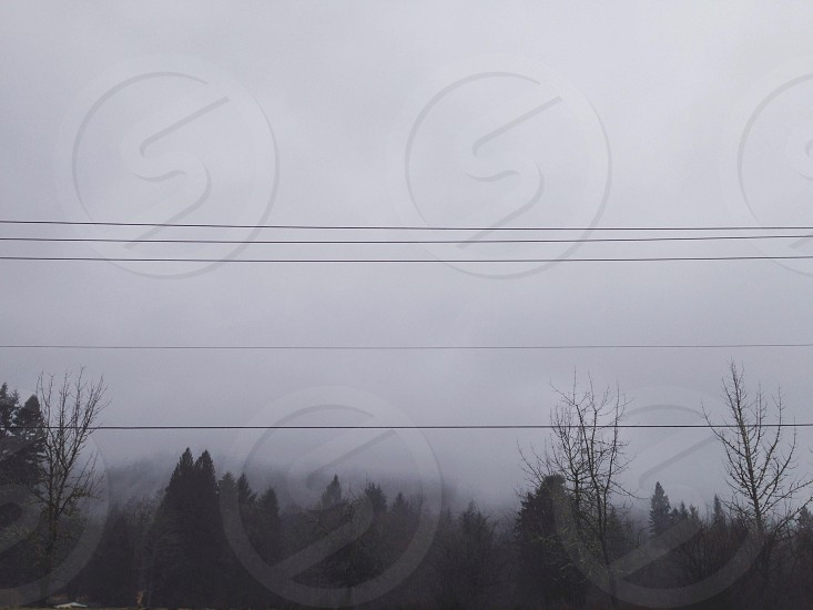 Power transfer.  photo
