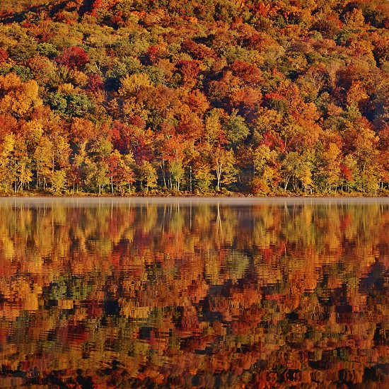 Fall leaves autumn New York New England lake reflection ripples nature picturesque beautiful serene calm photo