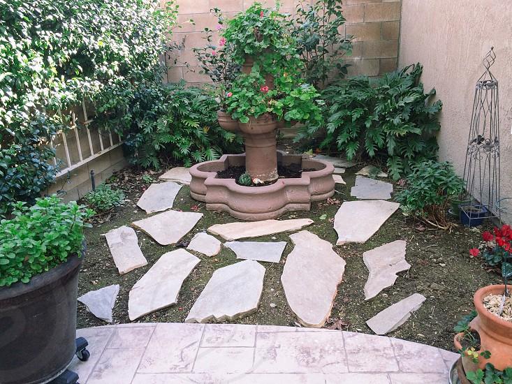 Fountain Garden photo