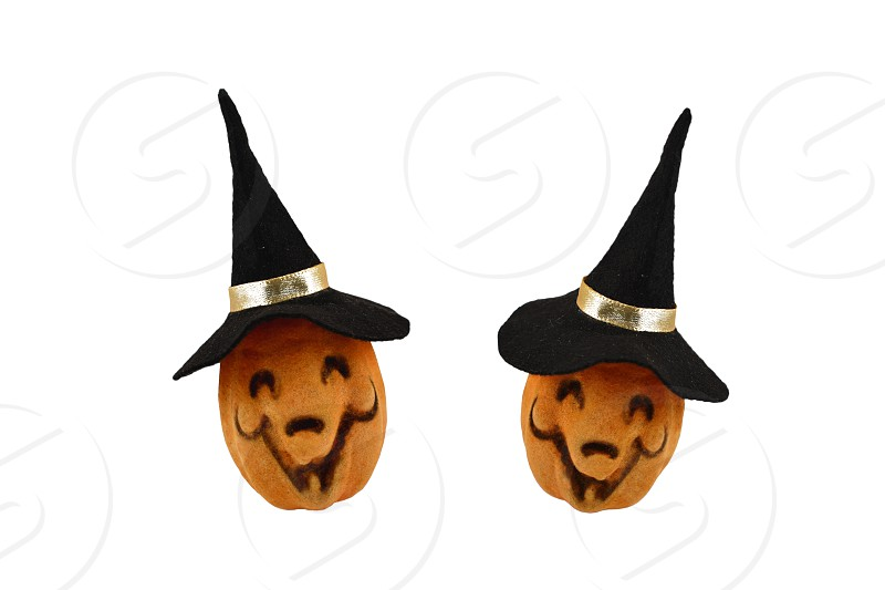 Two Halloween Pumpkins. Haloween pumpkin isolated on a white background. Pumpkin with a witch hat photo