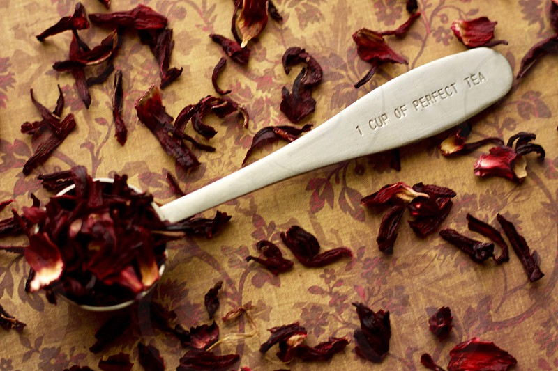 """Overhead view of a  stainless steel measuring spoon imprinted with the phrase """"1 CUP OF PERFECT TEA"""" filled with dried hibiscus petals on a brown and burgundy surface with scattered hibiscus tea photo"""