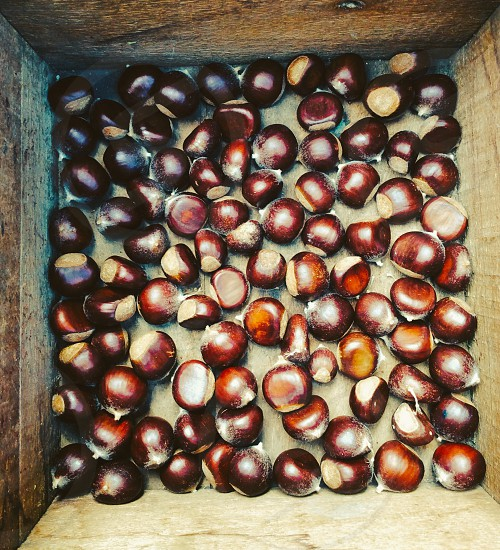 Chestnuts for stuffing nuts wooden crate antique box vintage photo