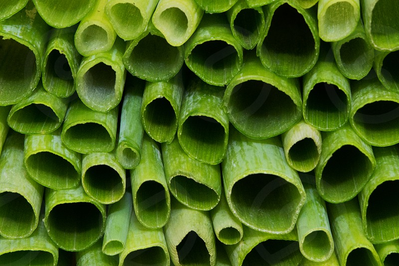 The hollow green leaves of scallions (also known as green onions) chopped and stacked. photo