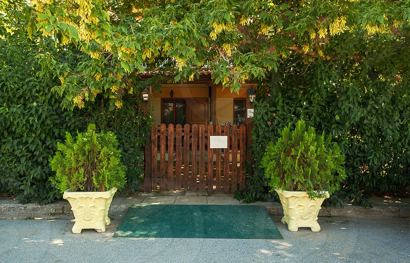 Entrance of a property with big green plants all around.  photo