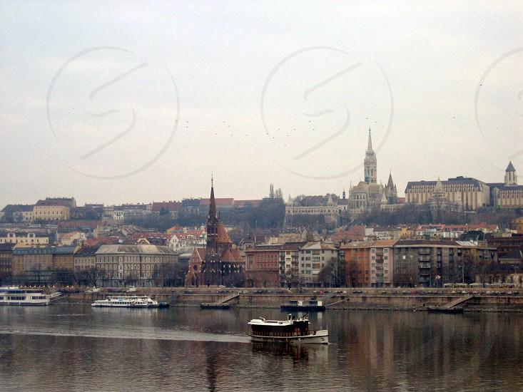 Blue Danube photo