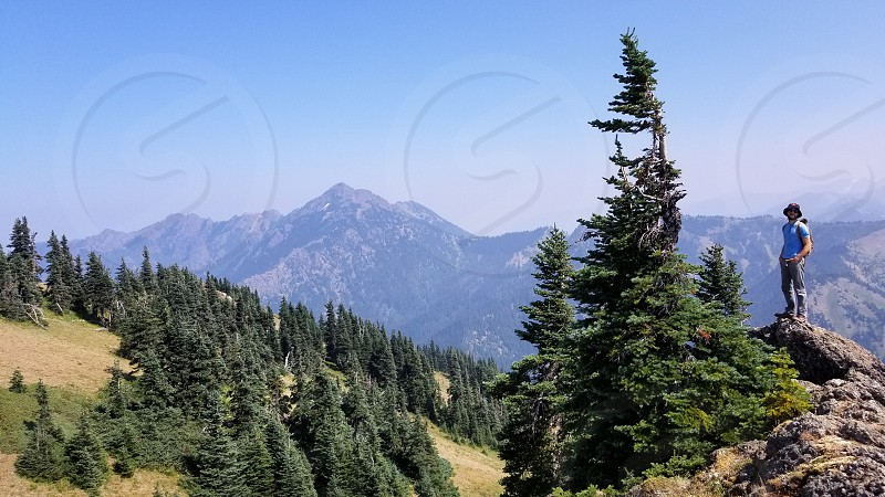 Olympic National Park. photo
