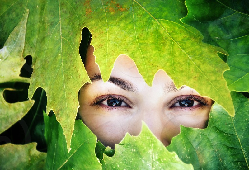 woman with brown eyeshadow covering face with green leaves photo
