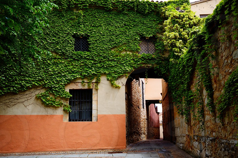 Zamora Calle Troncoso street arch in Spain photo