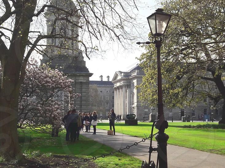 trinity college photo