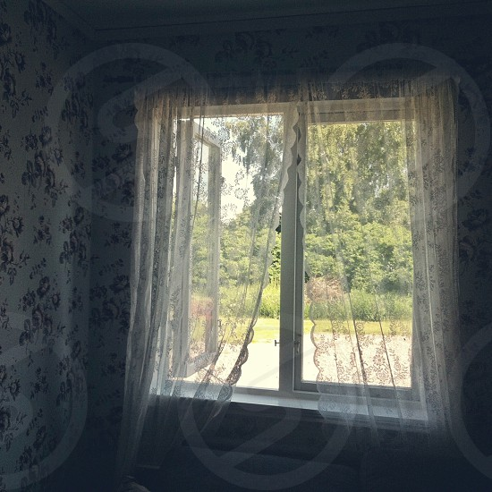 white sheer scalloped lace edge curtains photo