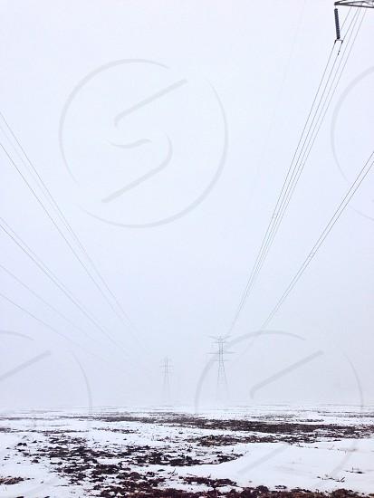 Fog lines photo