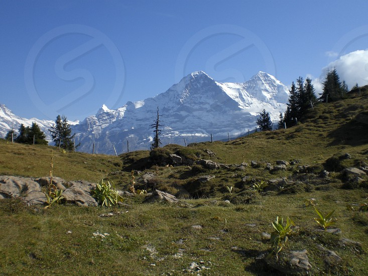 Eiger Grindelwald Switzerland photo