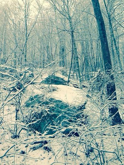 Winter wonder land  photo