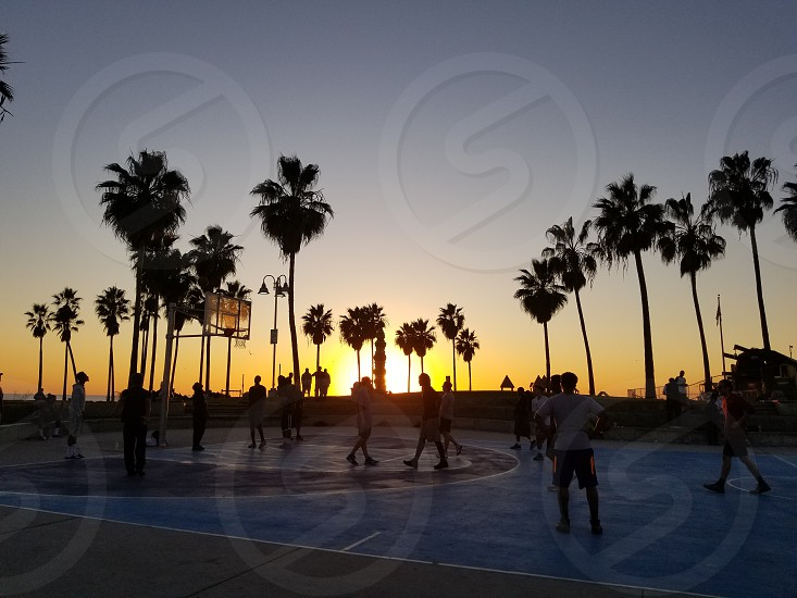 Venice Beach Basketball Courts photo