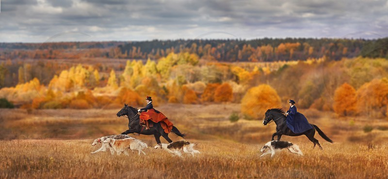 Reconstruction woman lady nobles autumn fall  gallope horse equine hunter century dog borzoi field nature equine riding habit horseback riding  photo