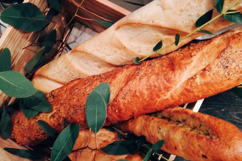 Ciabatta bread photo