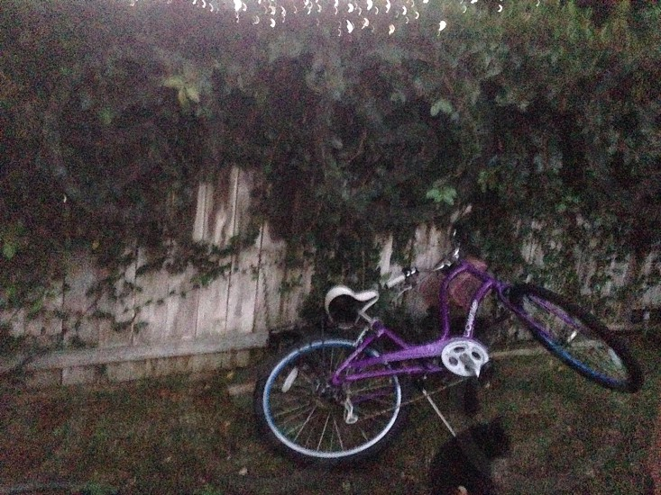 purple cruiser bicycle photo