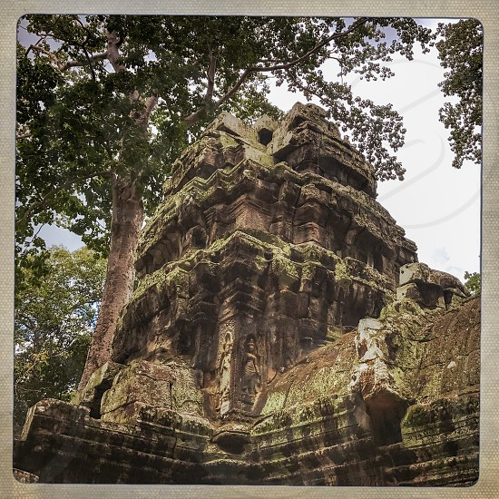 Outdoor day square colour filter Ta Prohm Temple Angkor Cambodia Asia Asian east eastern holy religious spiritual ancient ruin Ruins stone carved ornate tree nature roots masonry travel travelling tourist tourism wanderlust explore exploring exploration adventure Tombraider Lara Croft movie set location takeover photo