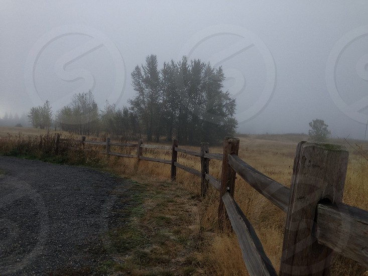 Fence in the fog photo